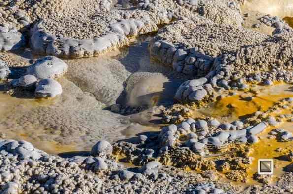 USA - Wyoming - Yellowstone National Park-75