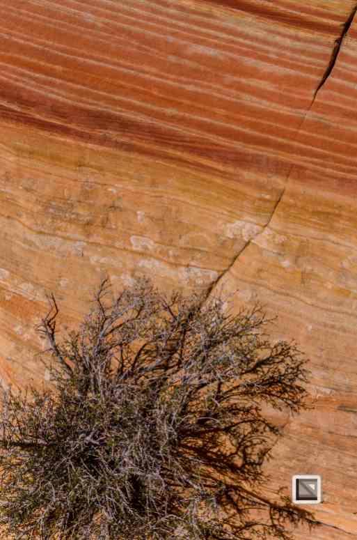 USA - Arizona - Vermillon Cliffs-33