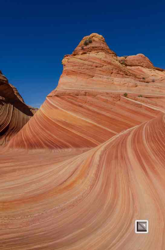 USA - Arizona - Vermillon Cliffs-49