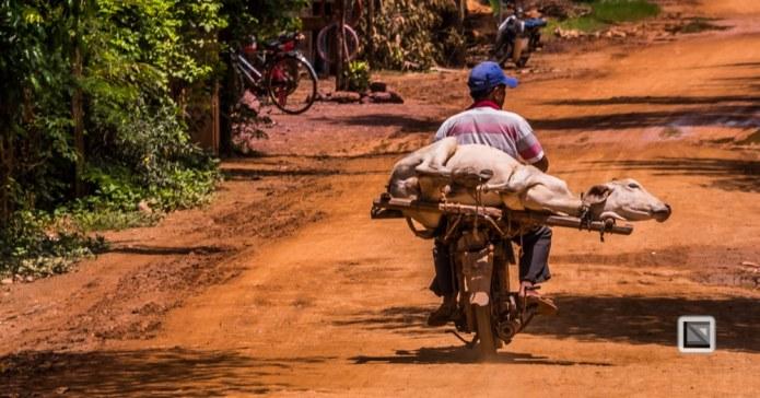 Kampot-182