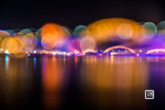 Da_Nang-Dragon_Bridge-Vietnam-56