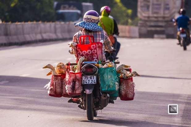 Da_Nang_Area-Vietnam-39