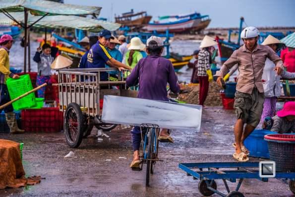 Phan Thiet Fish Market - Vietnam-17