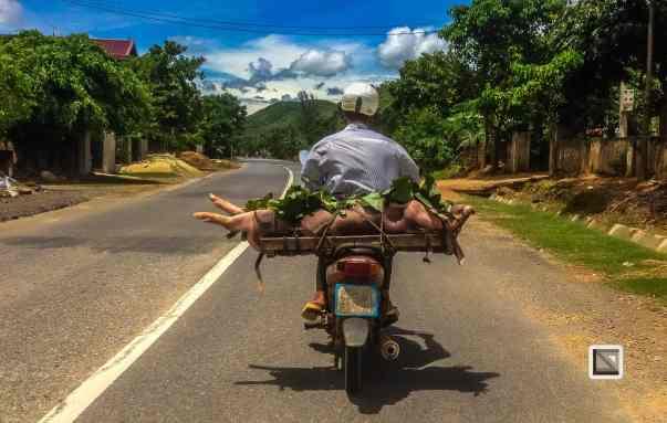 vietnam-hcm_trail-phong_nha-to-ninh_binh-3