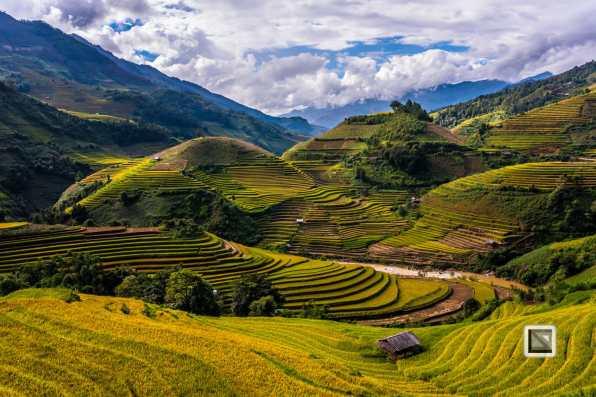 vietnam-mu_cang_chai-yen_bai_province-164