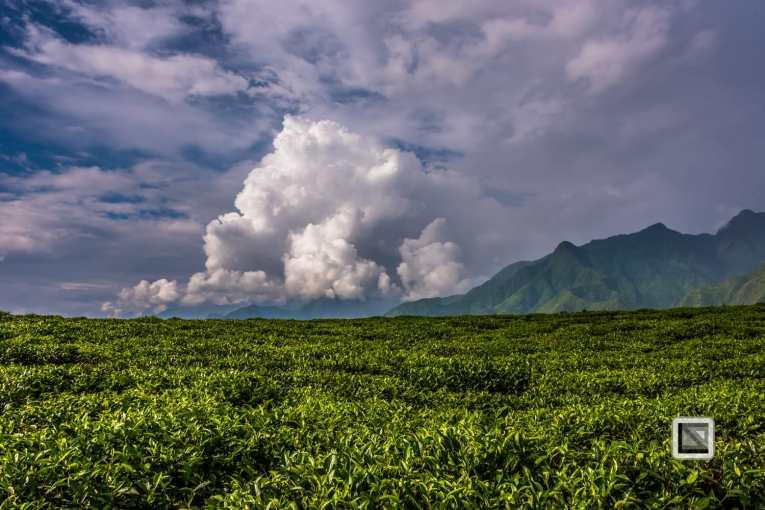 vietnam-mu_cang_chai-yen_bai_province-19