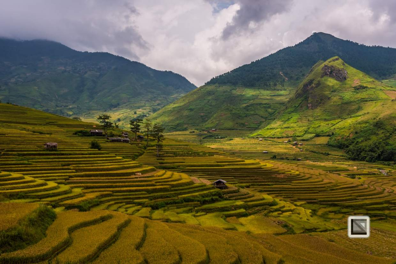 vietnam-van_chan-mu_cang_chai-yen_bai_province-162