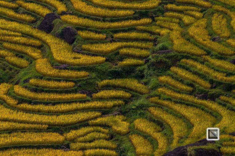 vietnam-ha_giang-bac_quang-17