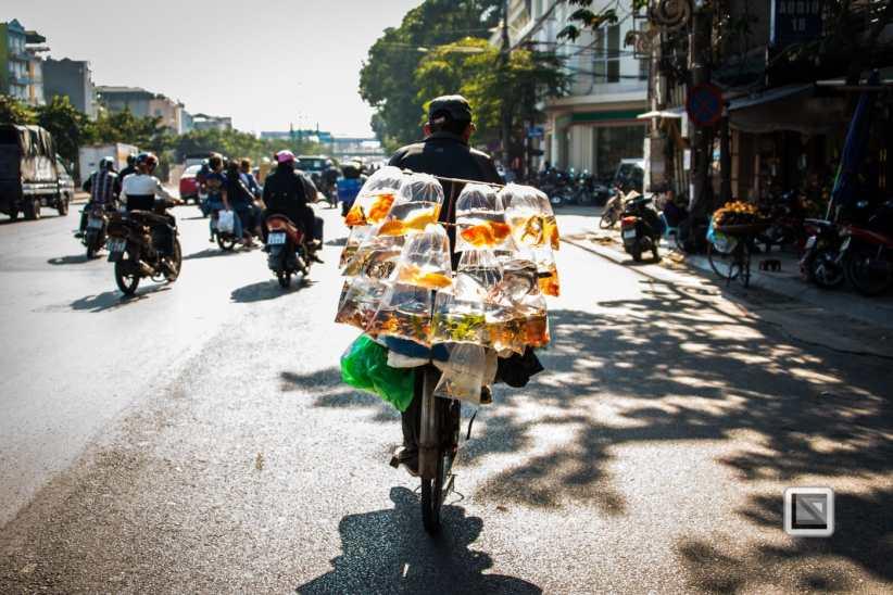 vietnam-hanoi-15