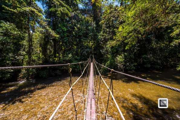 Malaysia-Sarawak-Mulu_Nationalpark2-32
