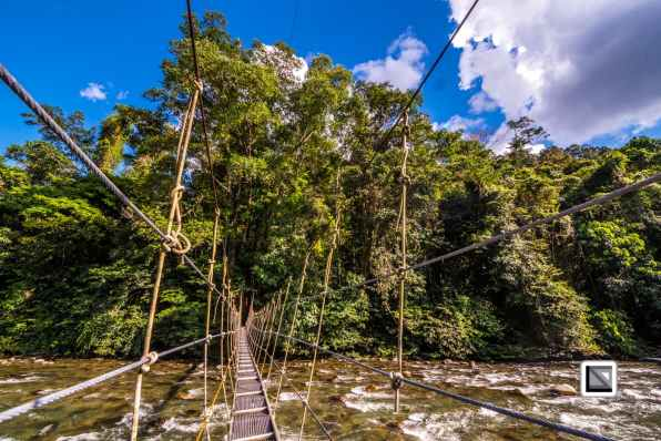 Malaysia-Sarawak-Mulu_Nationalpark2-71