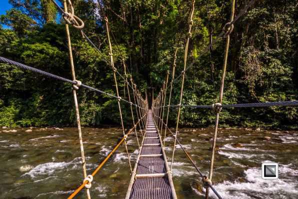 Malaysia-Sarawak-Mulu_Nationalpark2-74