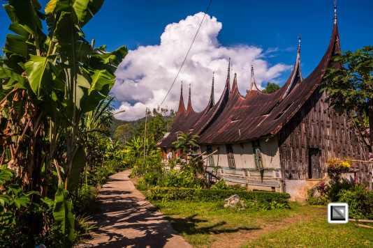 Indonesia-Sumatra-159