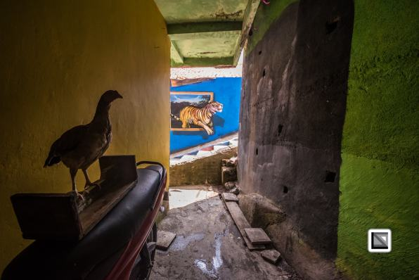 Indonesia-Java-Malang_Tridi_Cultural_Village-14