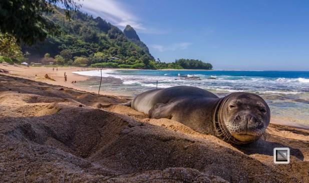 Hawaii Kauai-24
