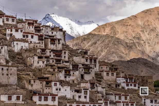 India - Jammu and Kashmir - Leh Ladakh-29