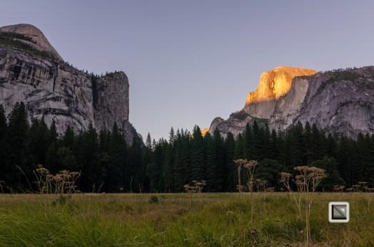 USA California - Yosemite National Park-9