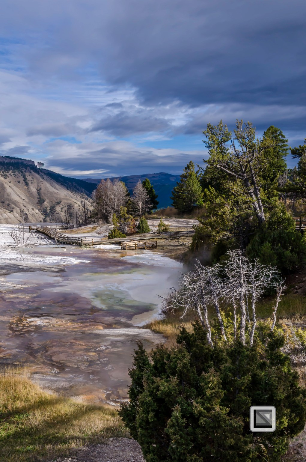 USA - Wyoming - Yellowstone National Park-10