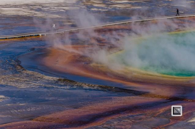 USA - Wyoming - Yellowstone National Park-101