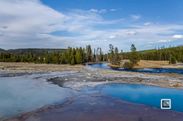 USA - Wyoming - Yellowstone National Park-108