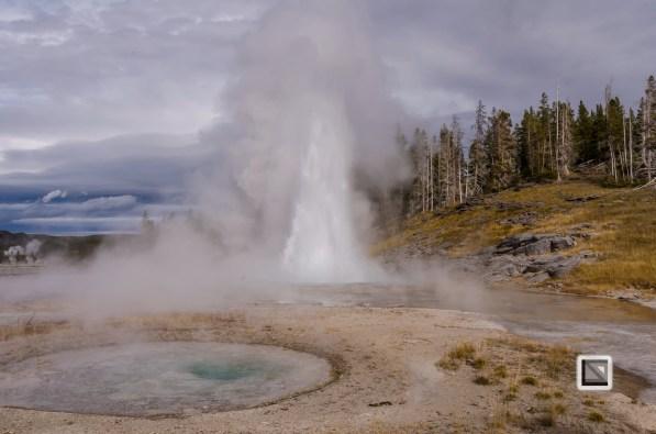 USA - Wyoming - Yellowstone National Park-44