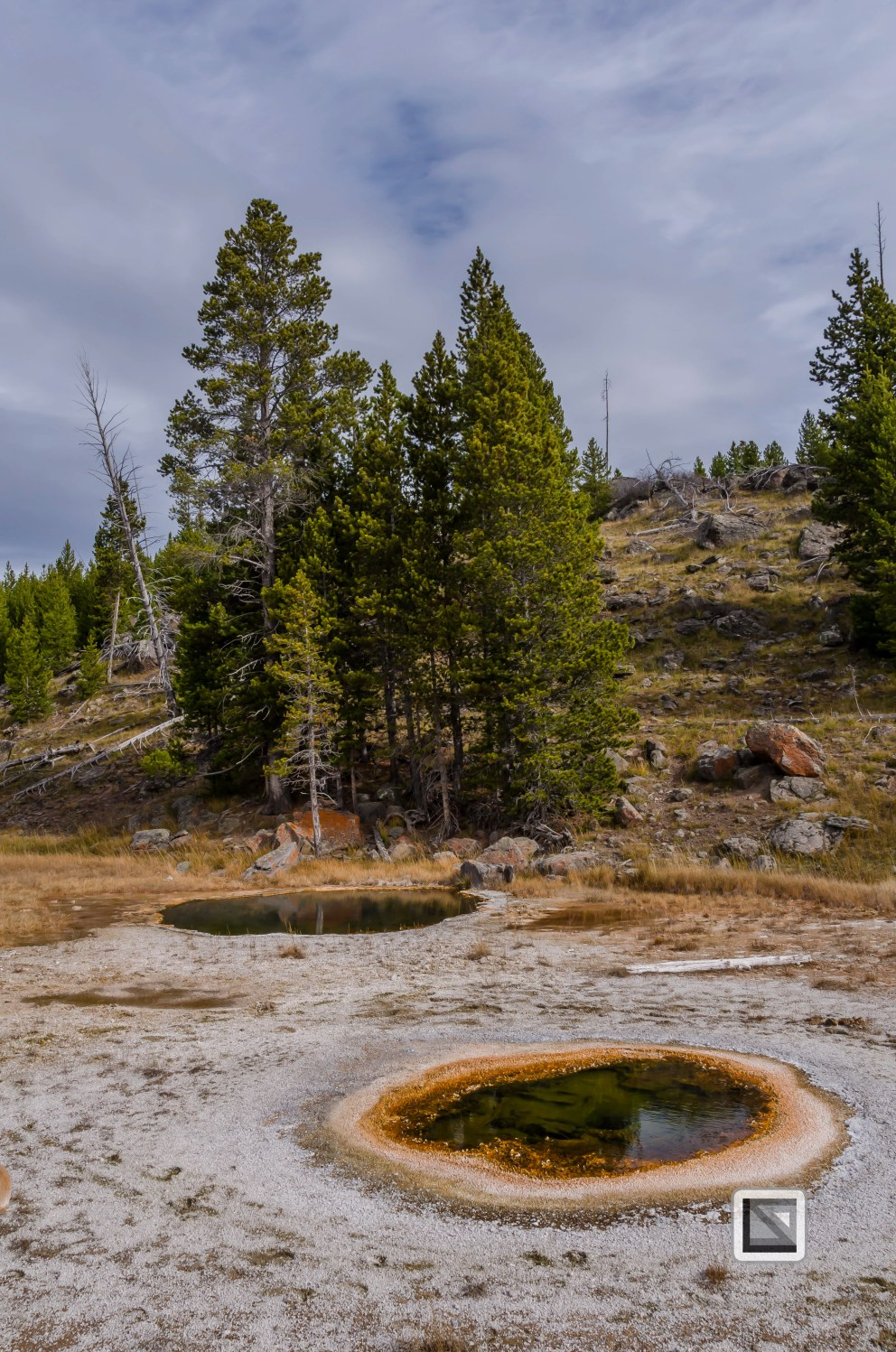 USA - Wyoming - Yellowstone National Park-48