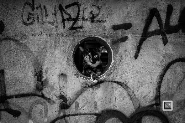 Bangkok Black and White-86