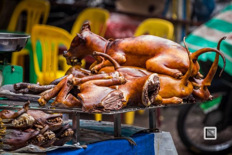 vietnam-hanoi-dog-4