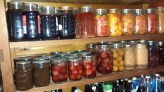 Canned fruits and pickled crabapples on the pantry shelf