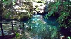 Cachoeira da trilha - Photo by Claudia Grunow