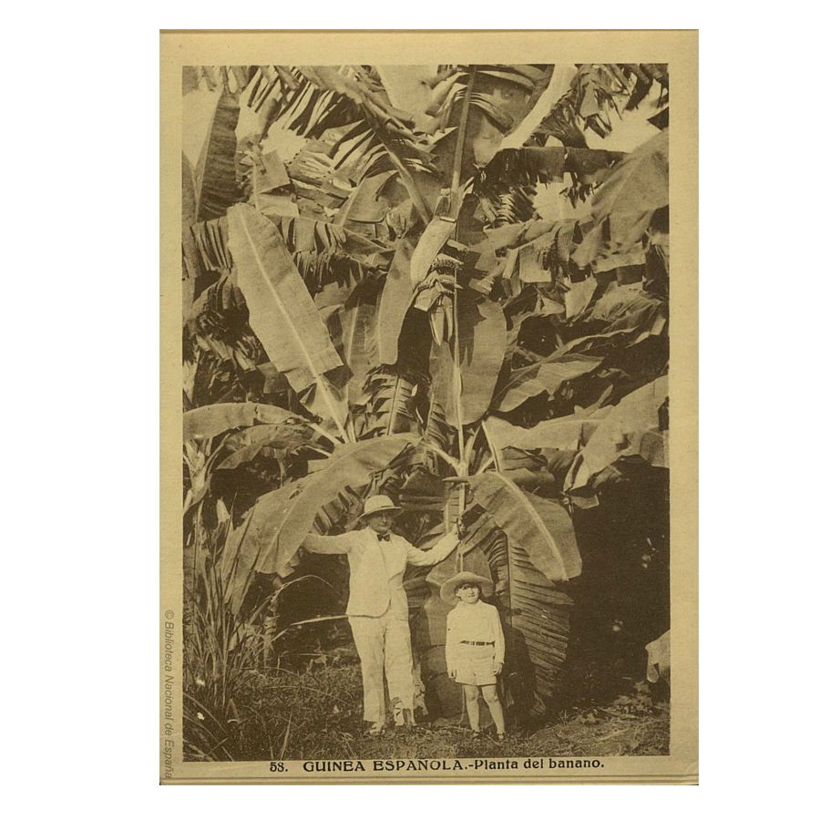 archivo_guinea-ecuatorial_02