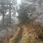 The Trail is the Teacher 2: Snow
