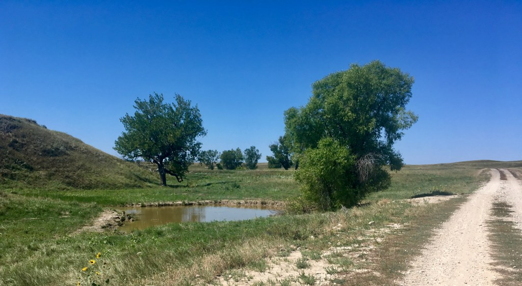 stock pond oglala bonnyman