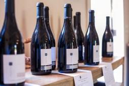 harvest-2015_la-rochelle-winery_077