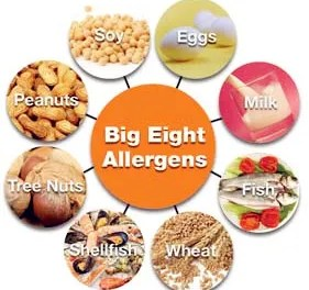 Allergy Labelling Coming Soon. More Legislation to Swallow