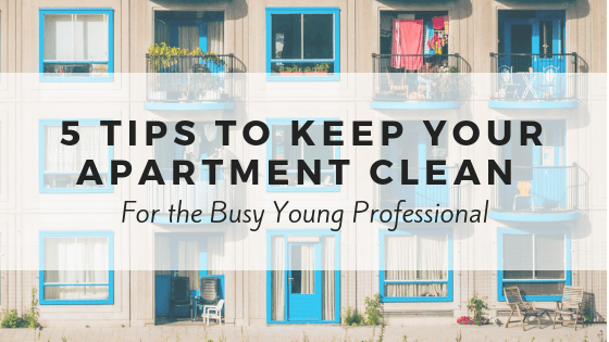 5 Tips To Keep Your Apartment Clean For The Busy Young
