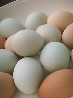scrambled eggs and turkey