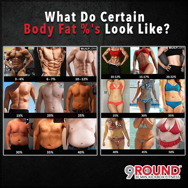 what do body fat % look like?