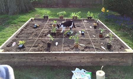 Oscar and the Garden