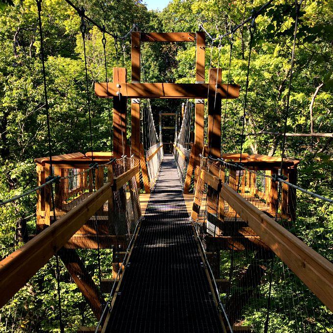 Holden Arboritum Canopy Walk