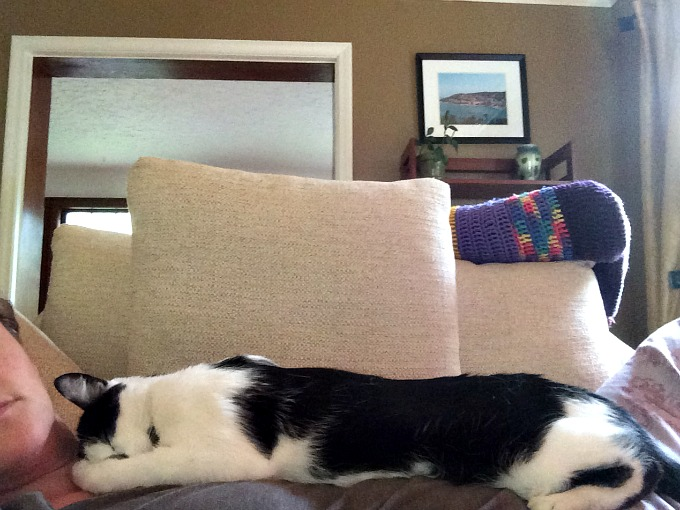 Oscar Sleeping on Meg