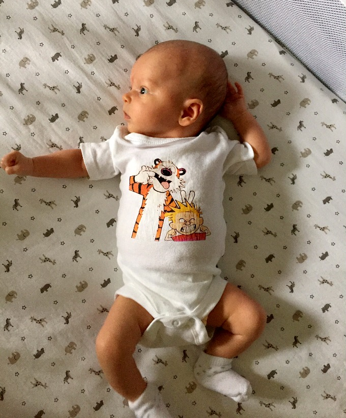 Ave Calvin and Hobbes Onesie