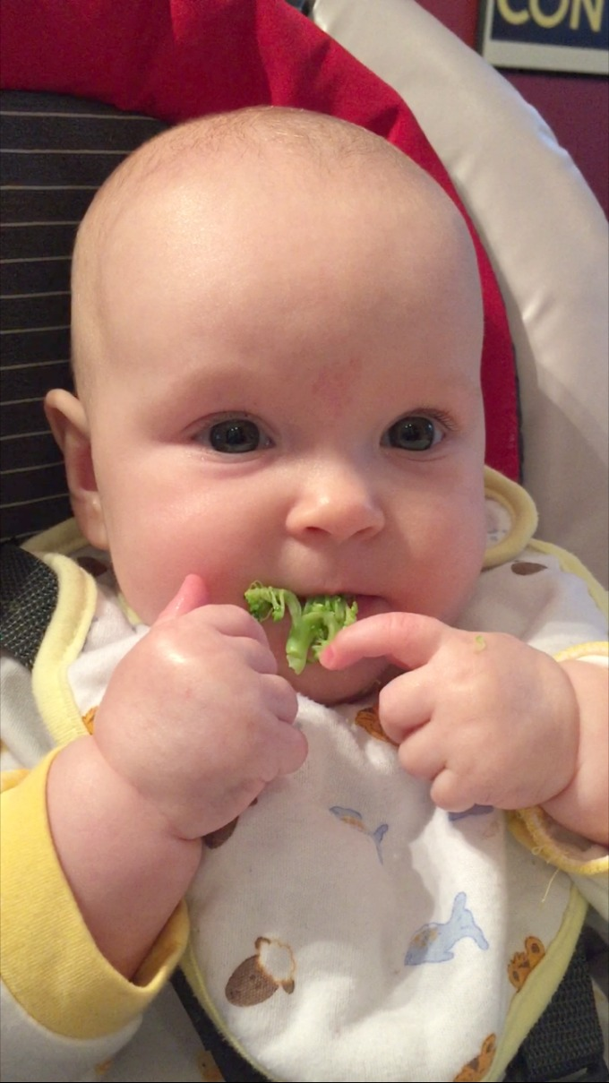 ave-eating-broccoli-october-2016