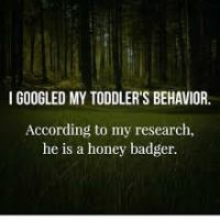 Things No One Tells You About Having Kids: The Toddler Years