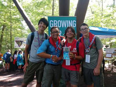 Sustainability and future forests at the World Scout Jamboree