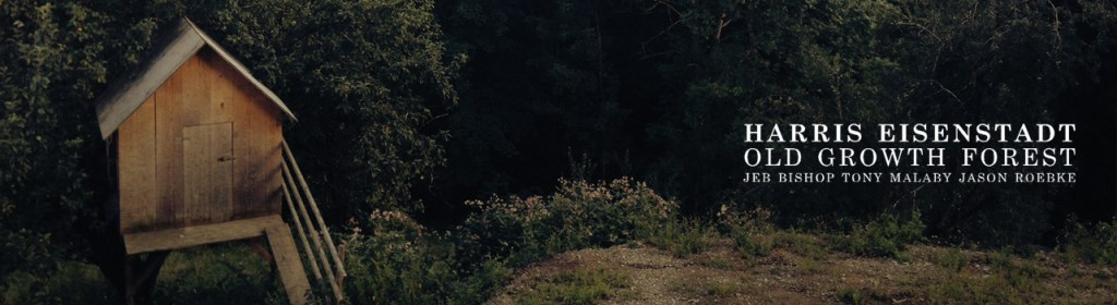 Point of Departure – Harris Eisenstadt – Old Growth Forest