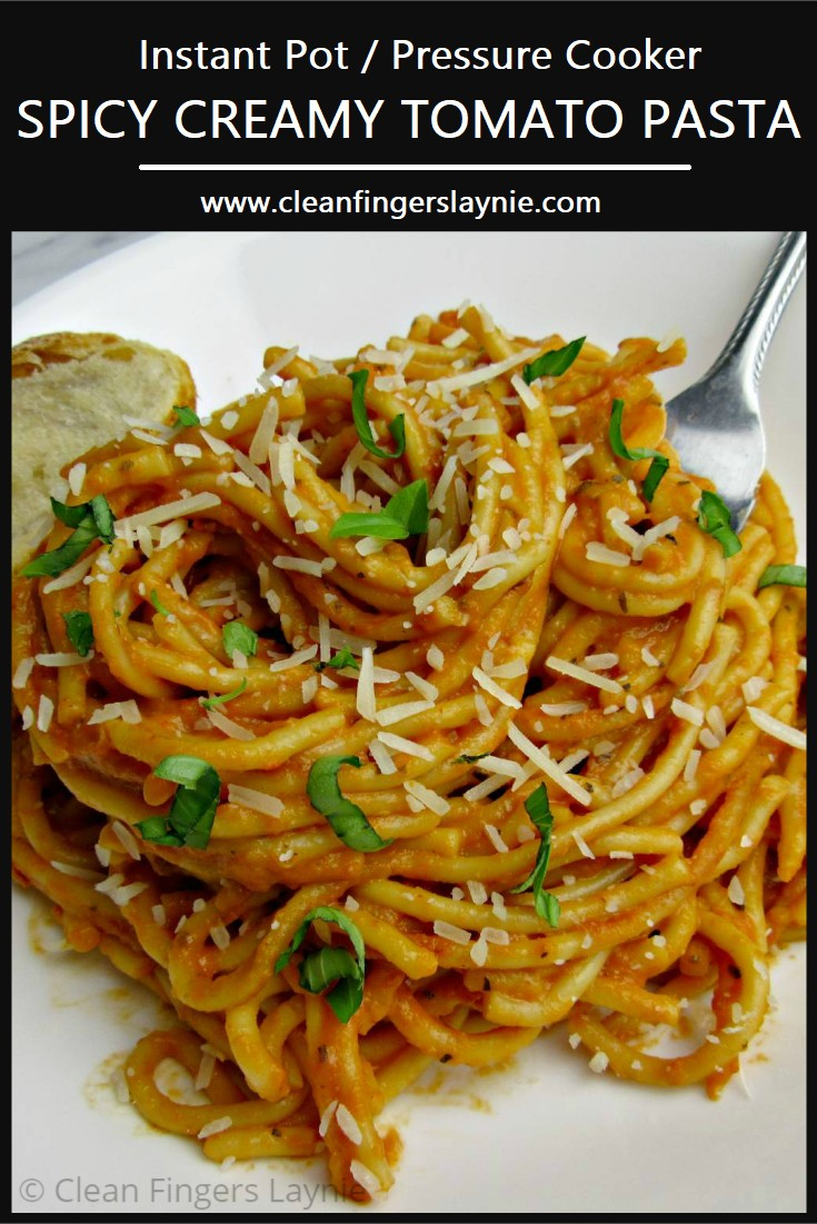 Spicy Creamy Tomato Pasta - Clean Fingers Laynie