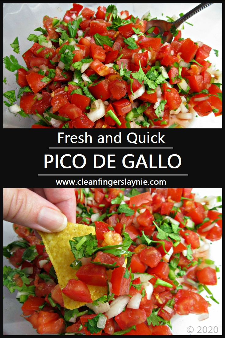 Fresh and Quick Pico De Gallo -- Clean Fingers Laynie