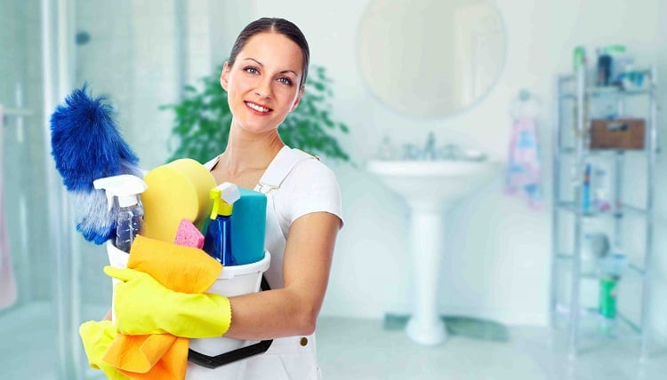 Dry Cleaners or Professional Cleaners