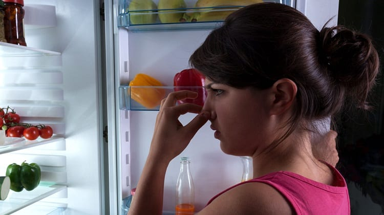 Clean Your Fridge with Coffee
